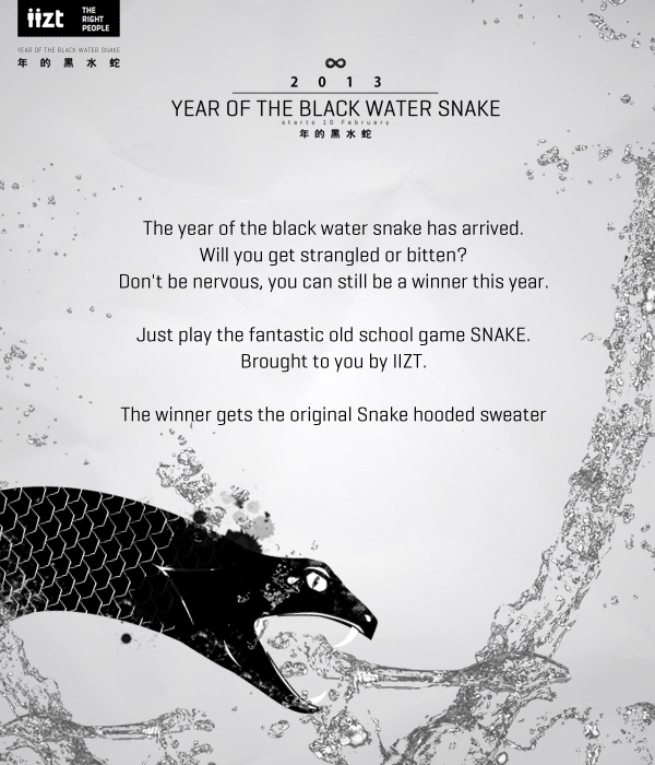 Year of the black water snake